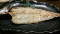 P1001332
